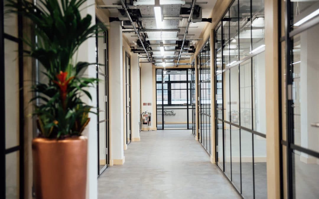 The Future of Office Spaces: Has the Pandemic Put an End to the Office?